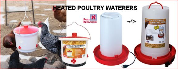 Heated Poultry Waterers