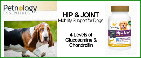 Petnology Hip & Joint